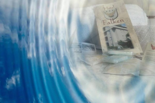 Hotel Falken - 9