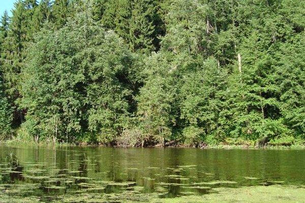 Рыболовный Комплекс Ершиха - фото 15