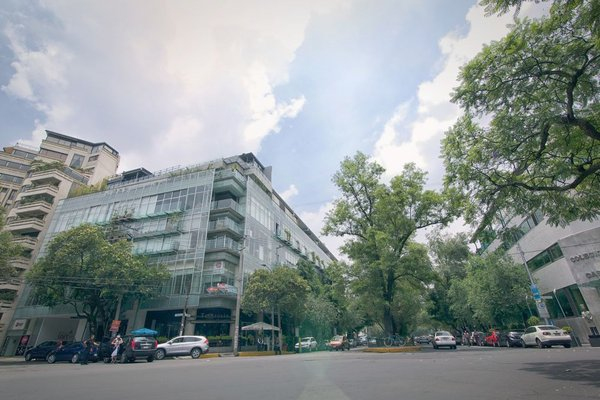 Hippodrome Hotel Condesa - фото 23