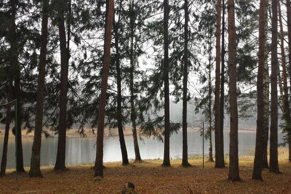 База Отдыха Флора Парк - фото 16