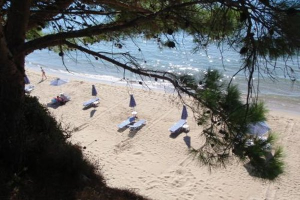 Golden Sand Hotel - фото 8
