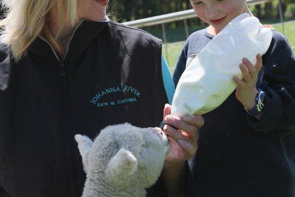 Johanna River Farm & Cottages - фото 11