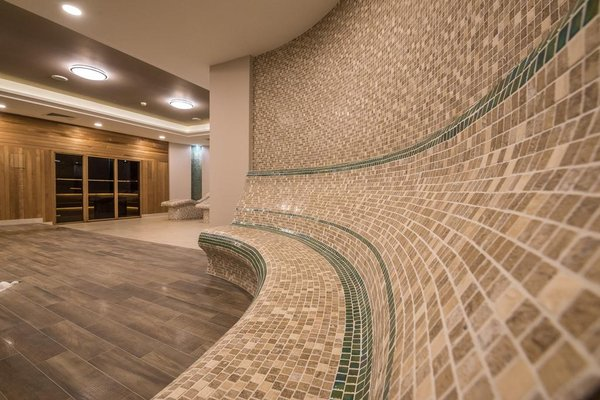 Lion Bansko Hotel - фото 8