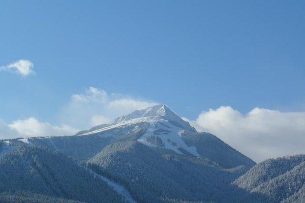 Cedar Lodge 3/4 Self-Catering Apartments - 3