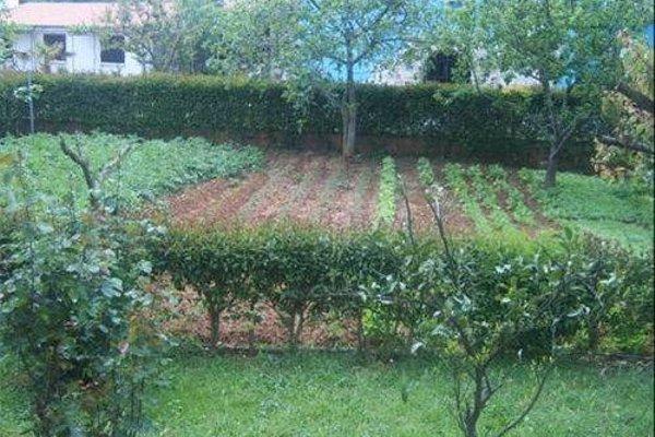 Apartments Zova - фото 21