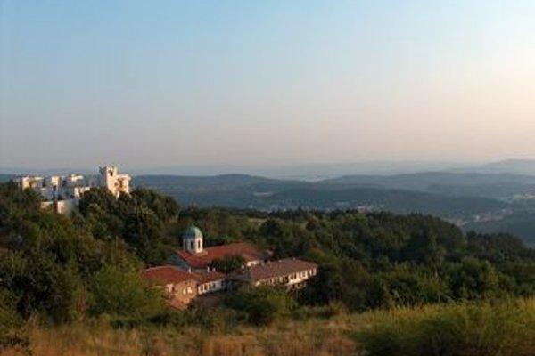 Arbanassi Palace - фото 22