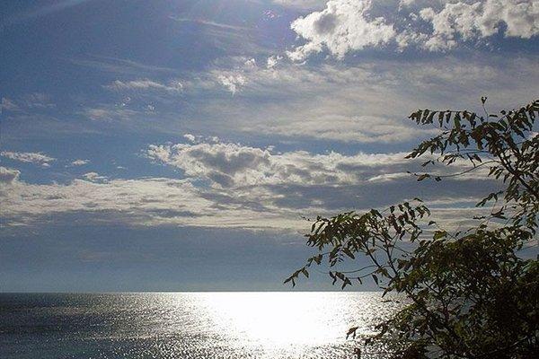 Морски бряг (Morski Briag) - фото 18
