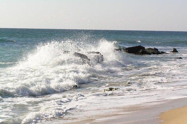 Морски бряг (Morski Briag) - фото 20