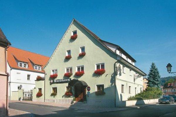 Hotel-Restaurant Waldhorn - фото 22