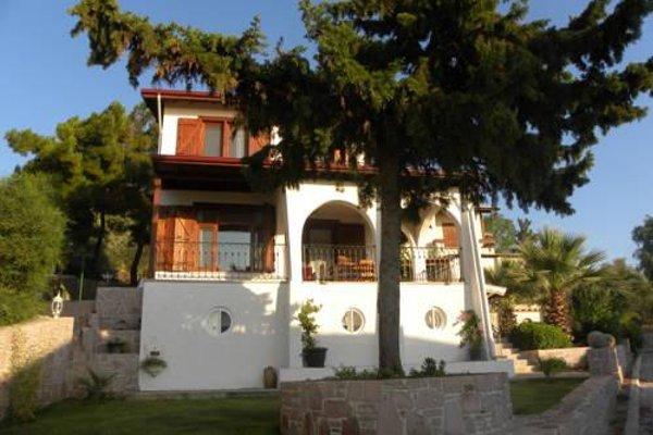 Villa Doga - фото 21