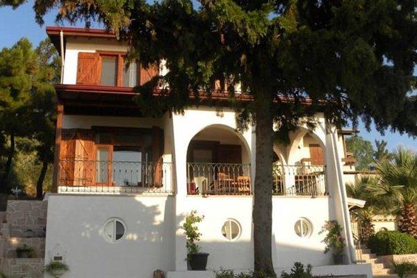 Villa Doga - фото 22