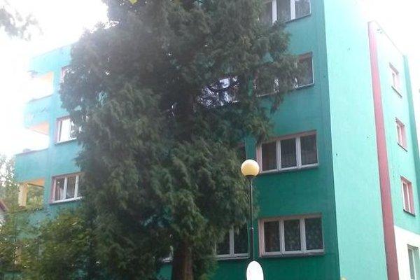 Pod Zielonym Kogutem - фото 8
