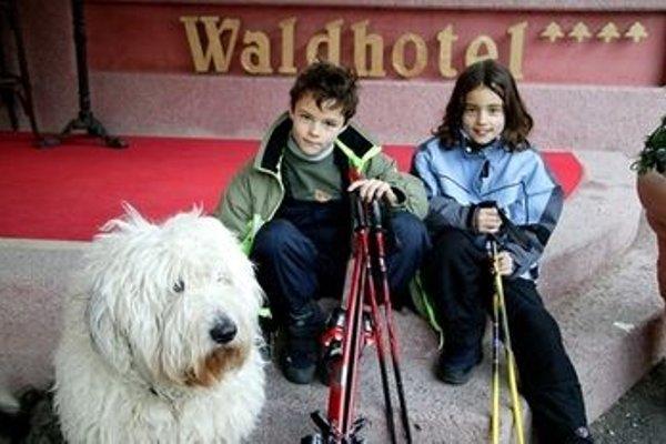 Waldhotel Seefeld - фото 4