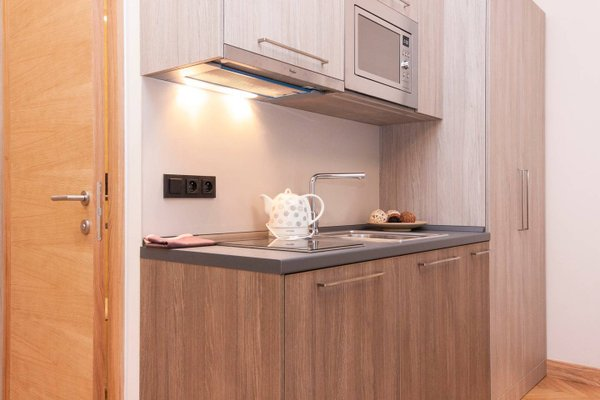 Manesova Astra Apartment - фото 6