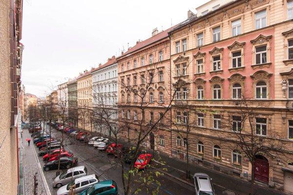 Manesova Astra Apartment - фото 8
