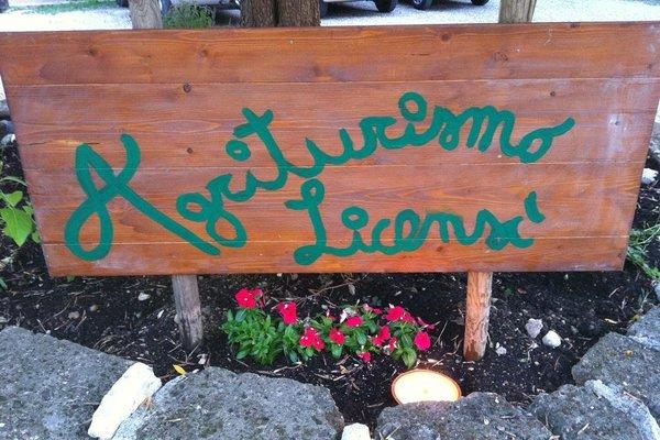 Agriturismo Licensi Del Bresa - фото 15
