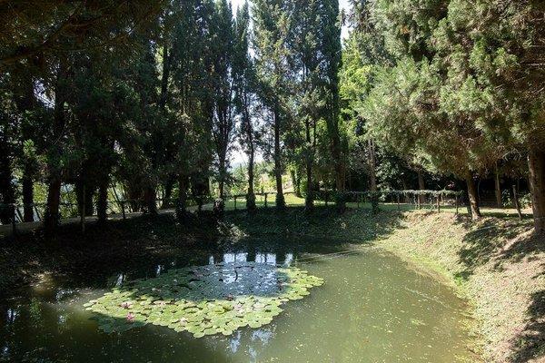 Villa Cattani Stuart - 18