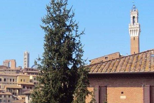 Vicolo Dell'Oro - 19
