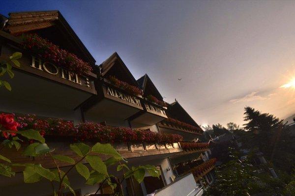Hotel Alpenhof - 13