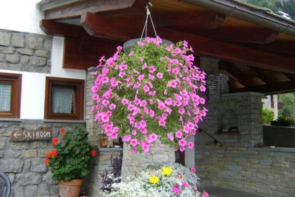 Edelweiss - фото 23