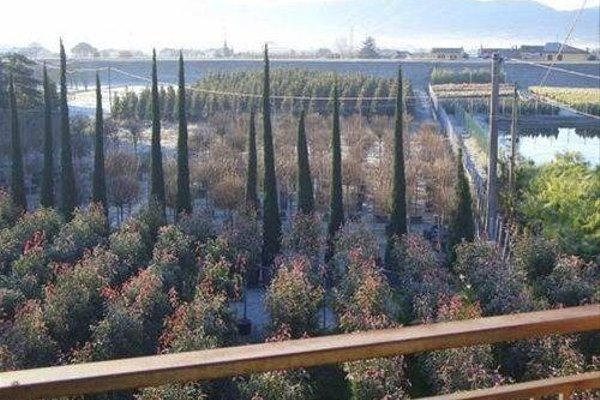 Agriturismo Il Vivaio - фото 3
