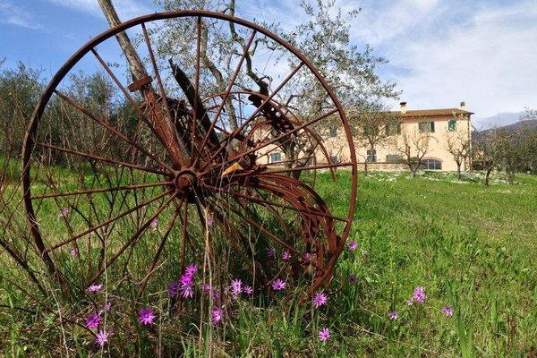 Agriturismo La Torricella - фото 16
