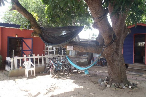 Lazy Hostel - фото 22