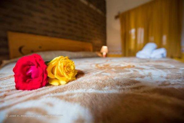 Hotel Casa Pomarrosa - 4