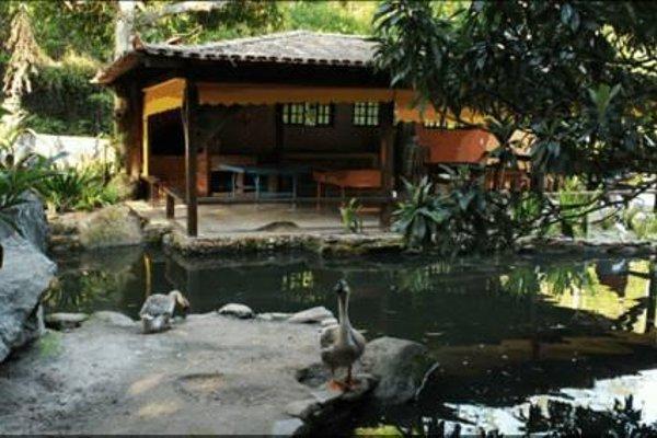 Sitio Das Bromelias - фото 15