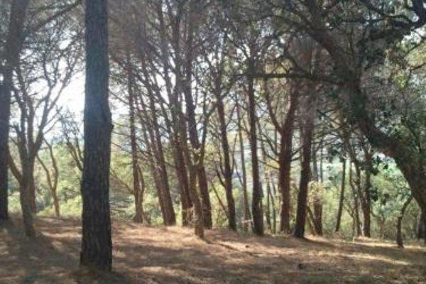 Villino nel Bosco - фото 20