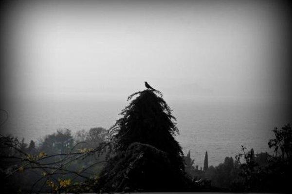 Albergo Panoramica - фото 18