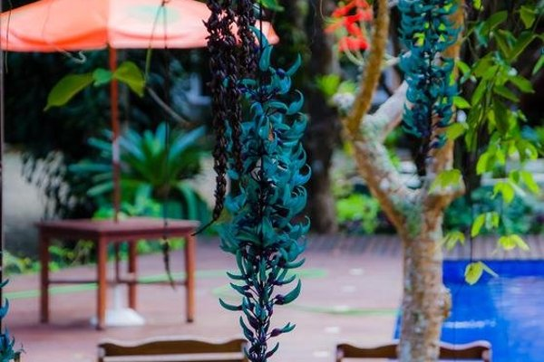 Pousada Quinta da Jade - 10