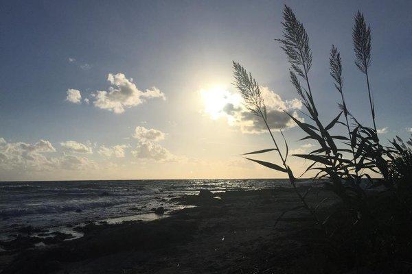 Marinella - фото 19