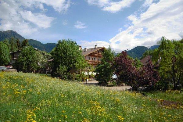 Albergo Bellaria - фото 22