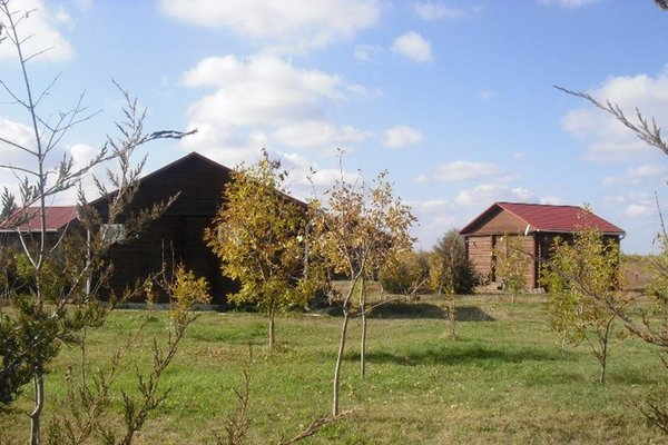 Курорт Рыбалкино - фото 22