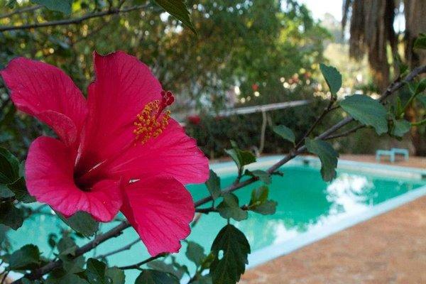 Eden Gardens - фото 20