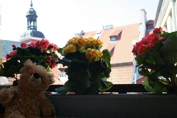 Хостел Teddy Bear - фото 21