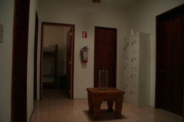 Lion Hostel - 18