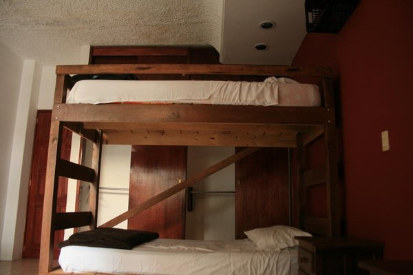Lion Hostel - 3