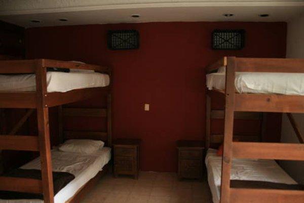 Lion Hostel - 4