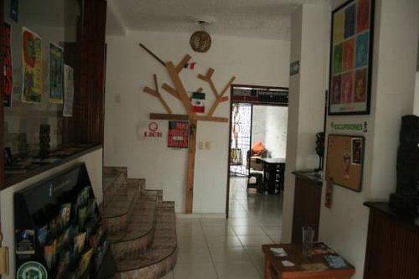 Lion Hostel - 9
