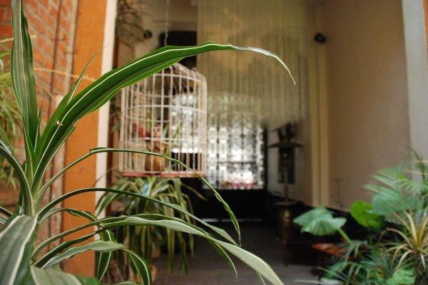 Экологически чистый отель типа «постель и завтрак» - фото 22
