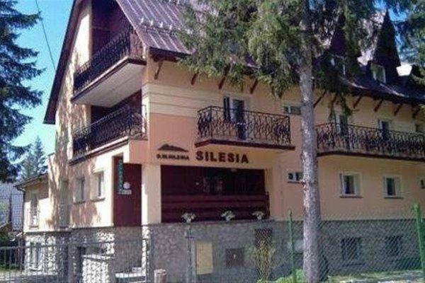Silesia - фото 13