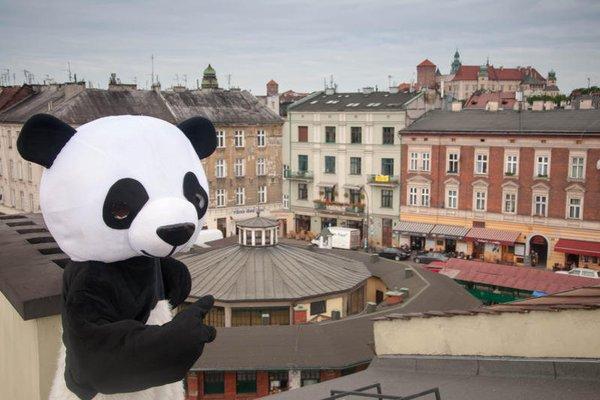 Hostel Panda - фото 22