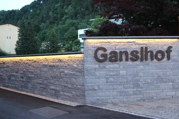 Hotel Ganslhof - фото 18