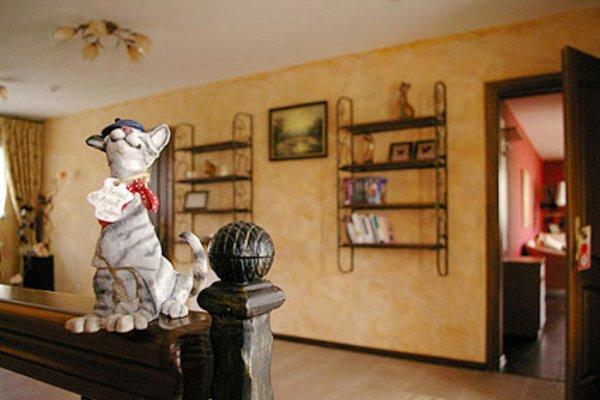 Кошкин Дом - фото 4