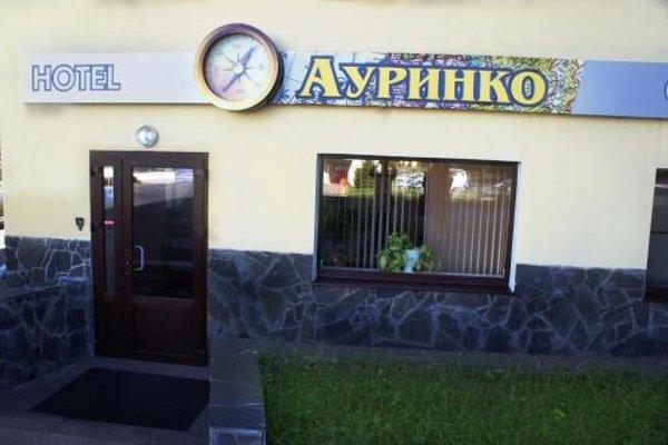 Ауринко - фото 23