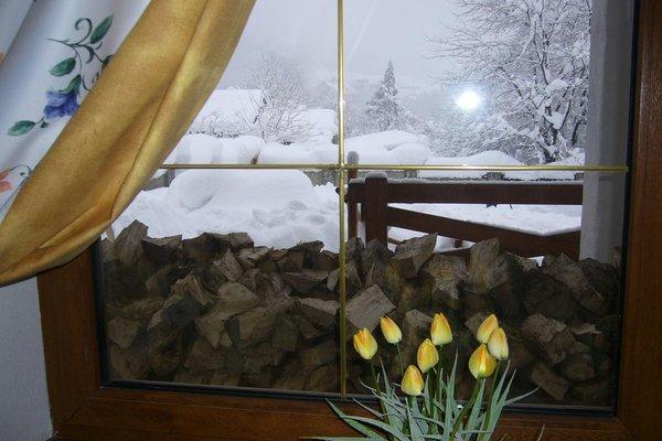 Отель Рай-Ski-Домик - фото 10