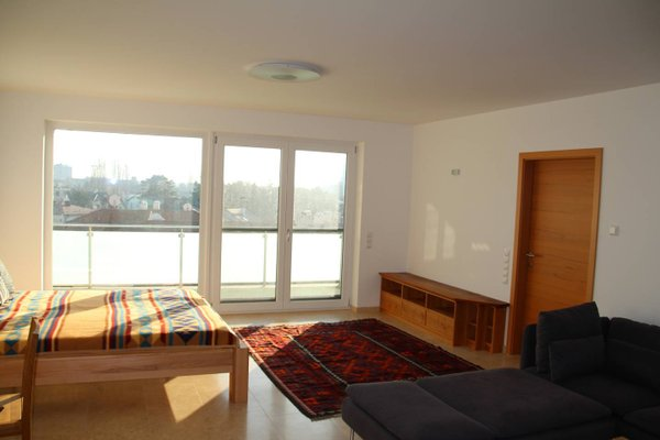 Danube Apartment with City View - 10