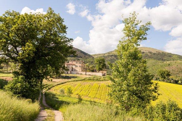 Borgo Colognola - Dimora Storica - 19